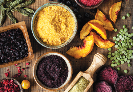 Dehydrated Vegetable Powders
